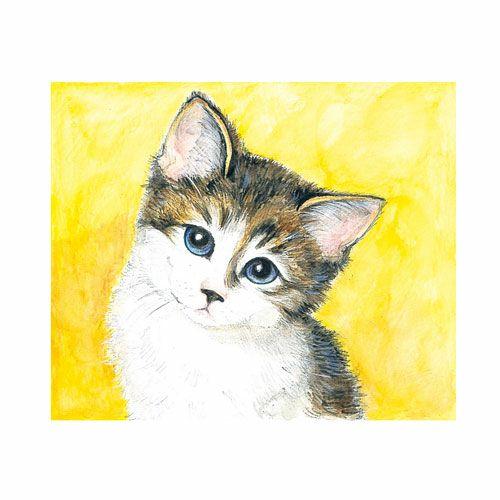 大人の塗り絵:塗り絵・物語シリーズ:動物編:猫